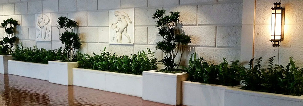 Indoor Plants And Interior Landscaping Ambius Interior Plant Services  Landscaping Rental McFarlane Douglass Orchids And Indoor Plants In Lobby  Interior ...