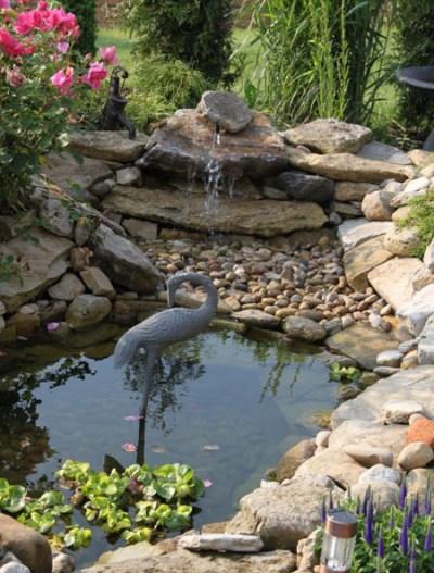 Pond with turtle island - Pond Design Ideas