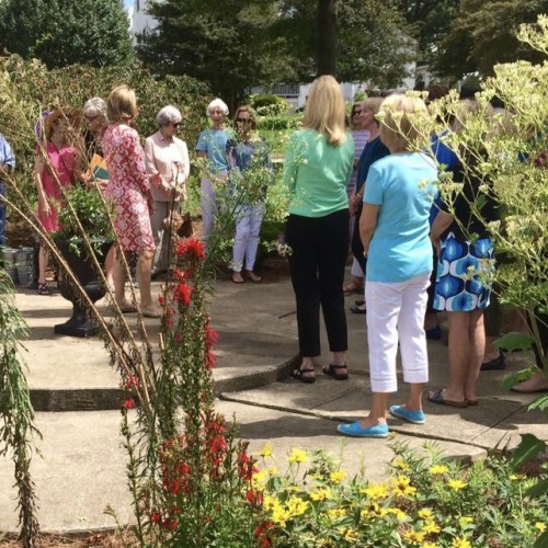 Whitehaven Monarch Way Station and Garden Spring 2017   the Monarch Way Station garden was glorious  The garden was a  featured stop on Paducah Garden Club s 2017 Mayfair garden tour