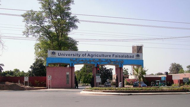 University Of Agriculture In University Main Road