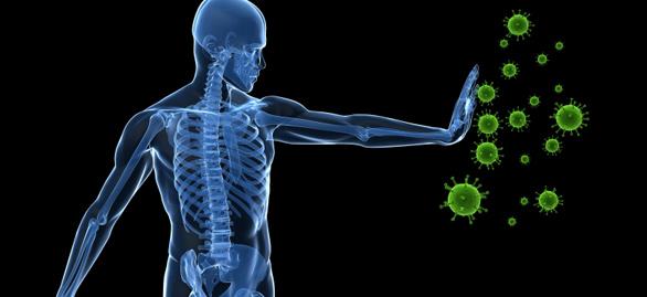 Immune Fighting Virus System