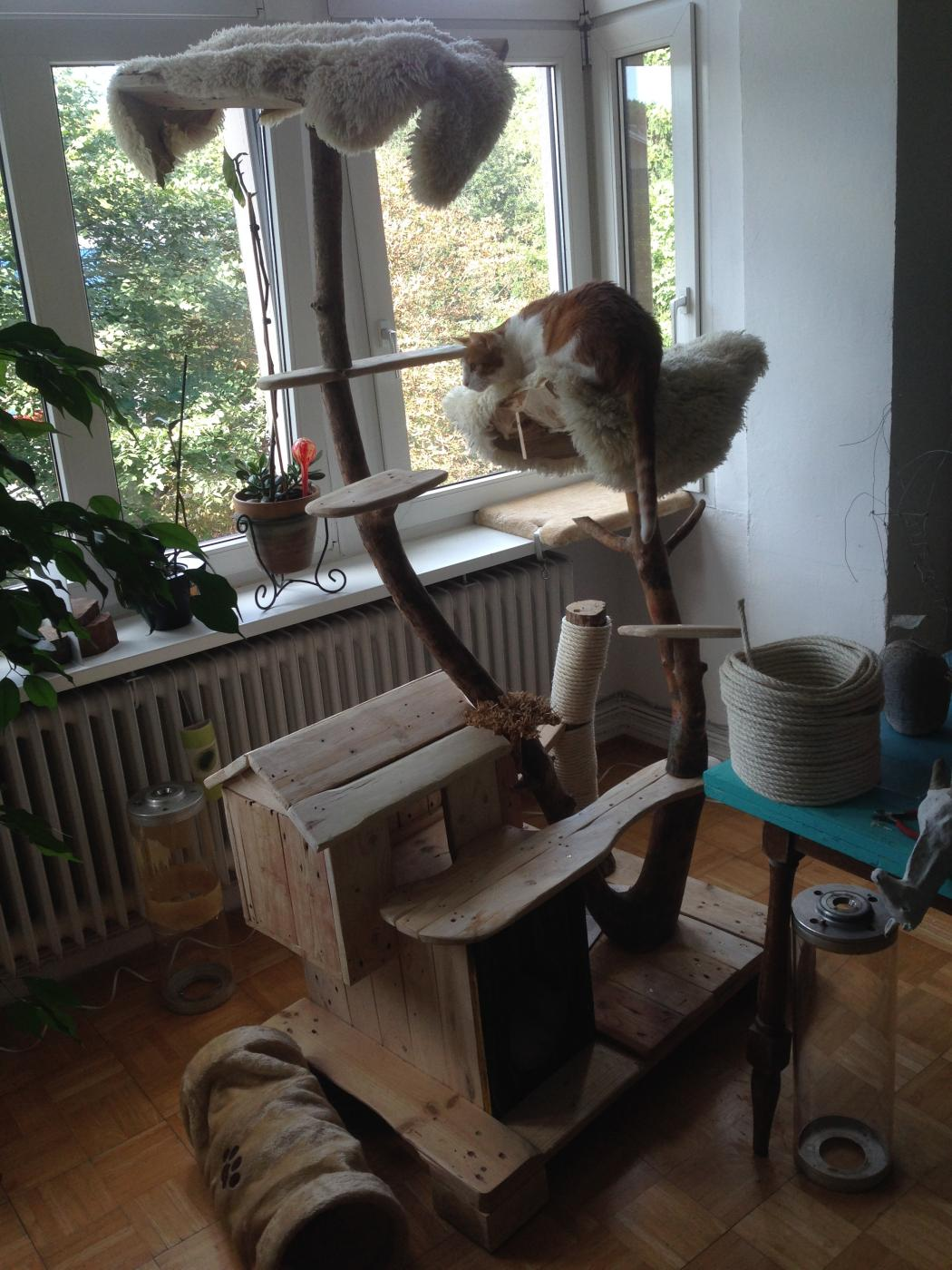 Cat Scratching Post And Cat House From Pallet Wood Bark