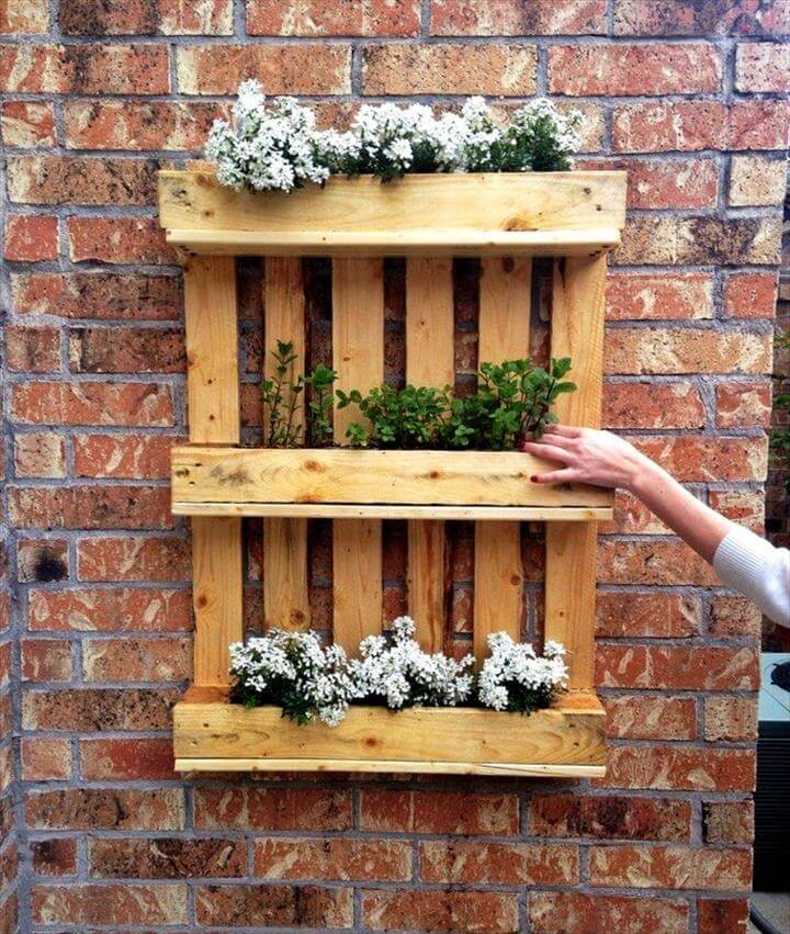 How Build Herb Garden