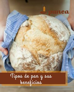 Tipos de pan y sus beneficios