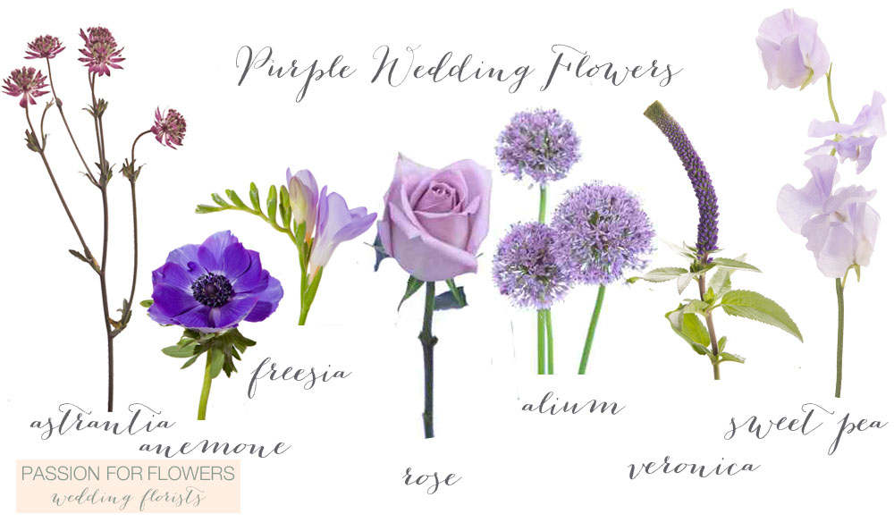PURPLE WEDDING FLOWERS     Passion for Flowers purple wedding flowers