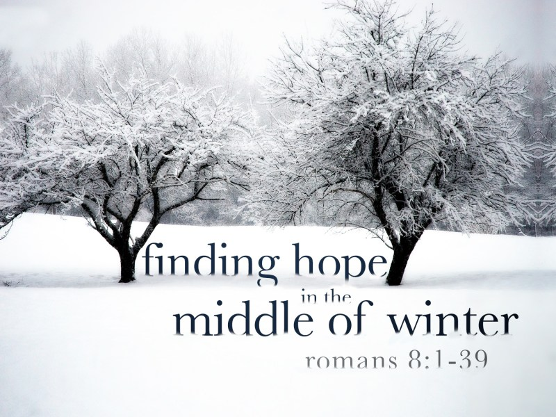 the New Year is one filled with hope    Here s The Thing    2011