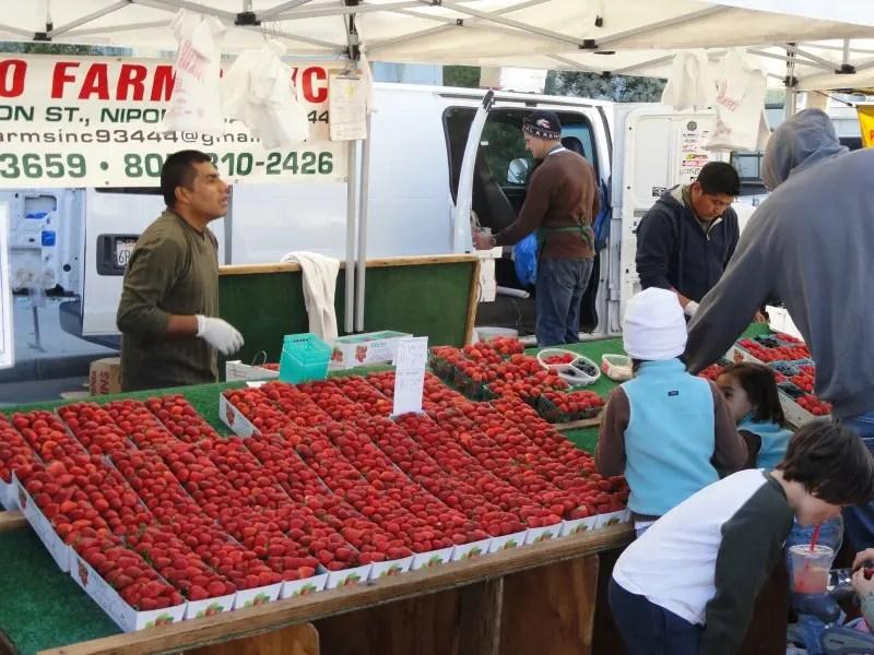 South Bay Farmers Market