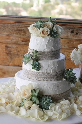 3 tier succulent wedding cakes Archives   Patty s Cakes and Desserts simple rustic wedding cake