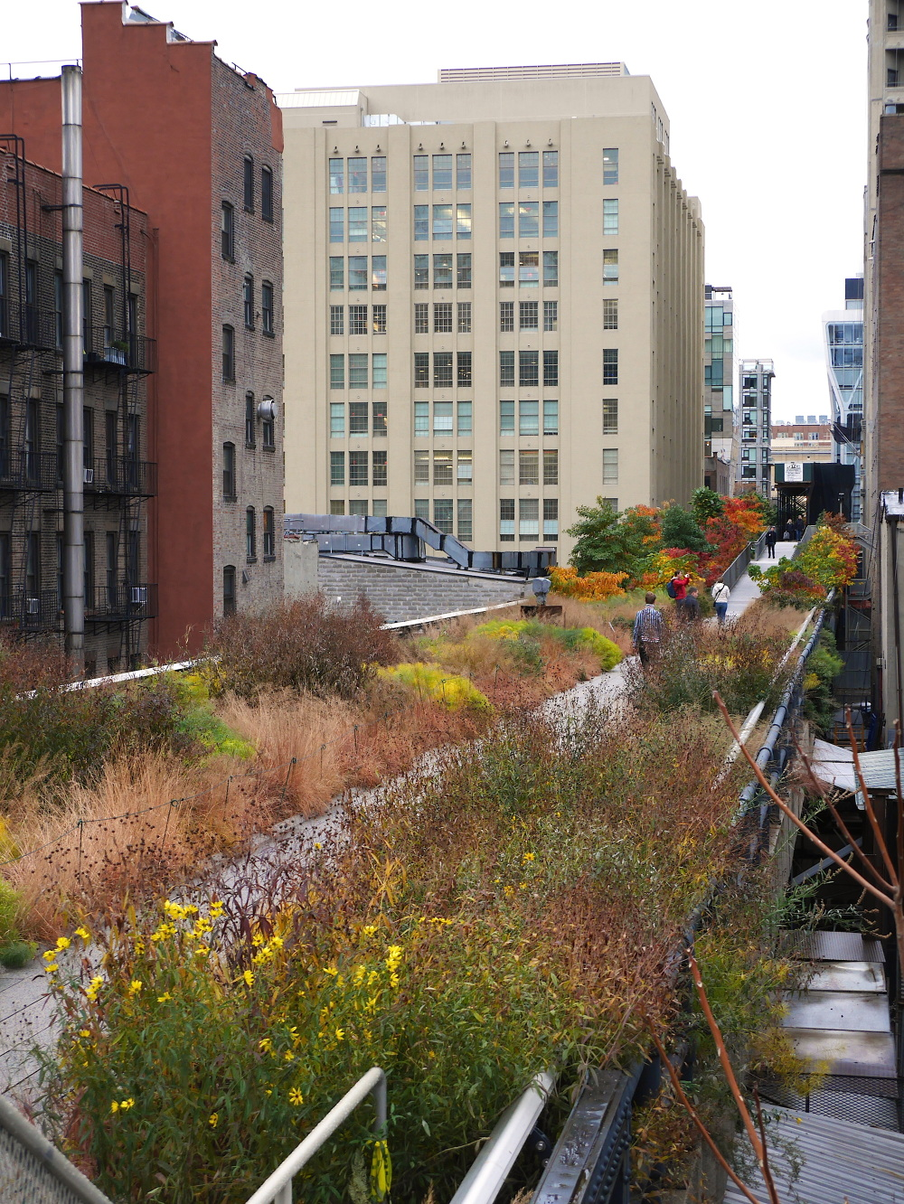 The High Line Patrickcullina Com
