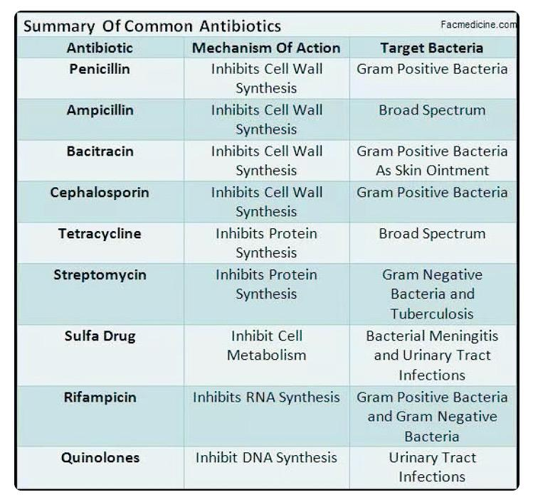 Drug Classification And Chart