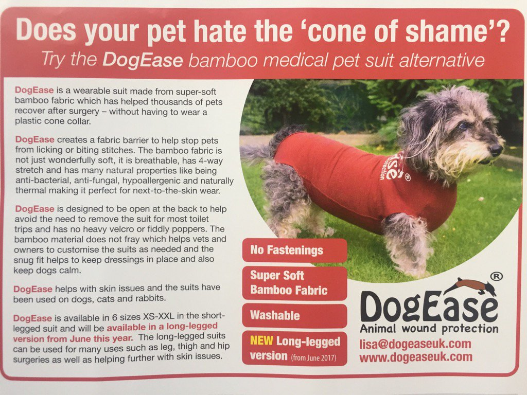 DogEase on Twitter   Advert looks great in  ATMediaMag  pets  dogs     1 03 PM   14 May 2017