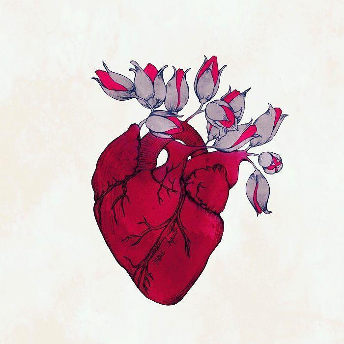 Beautiful Sad Rose Drawings