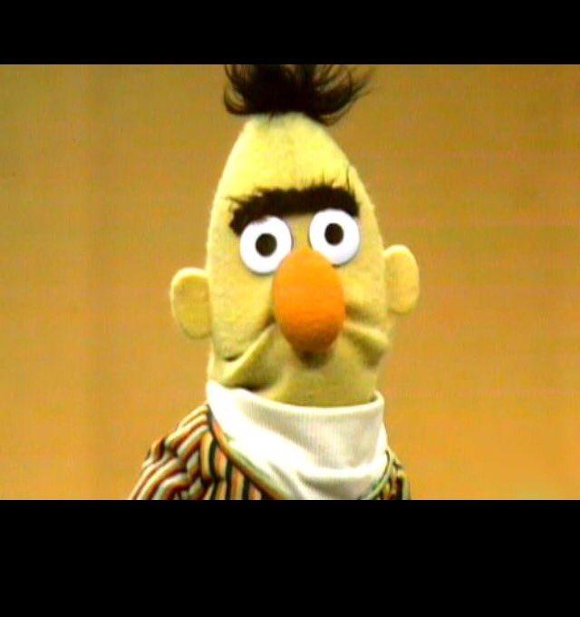 Birds Sesame Angry Bert Street