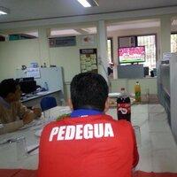 PEDEGUA (@PEDEGUA )