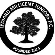 Lydiard Millicent FC (@LMJFC) Twitter profile photo