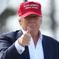 Team Trump (@TeamTrump )