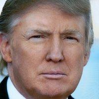 Donald J. Trump ᵖᵃʳᵒᵈʸ (@realDonaldTrFan )