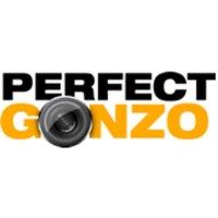 PerfectGonzo (@perfectgonzo )