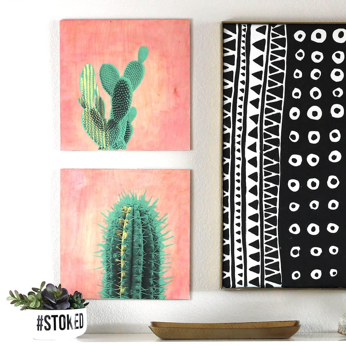 cactus art square