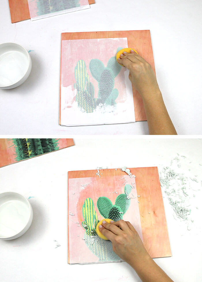 make your own photo transfer art on wood - cactus on pink