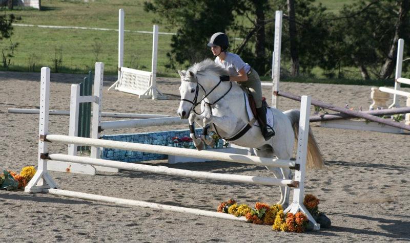 Horseback Riding Lessons Petaluma