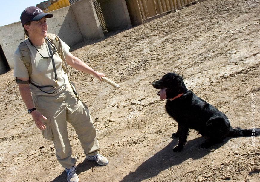Kutya oktató felszerelés