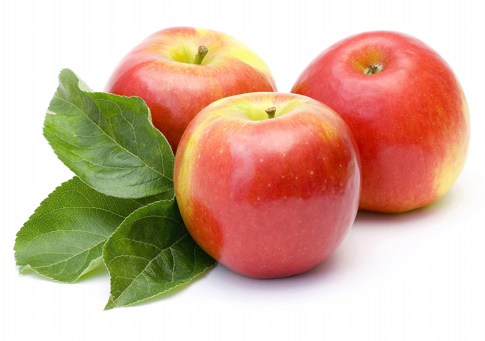 Collection Of Fresh Red Amp Green Apple Fruits Elsoar