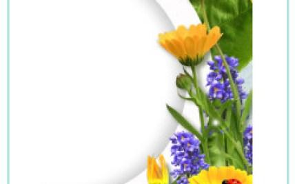 Photofunia Love Flowers