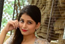 Twinkle Agarwal Photos