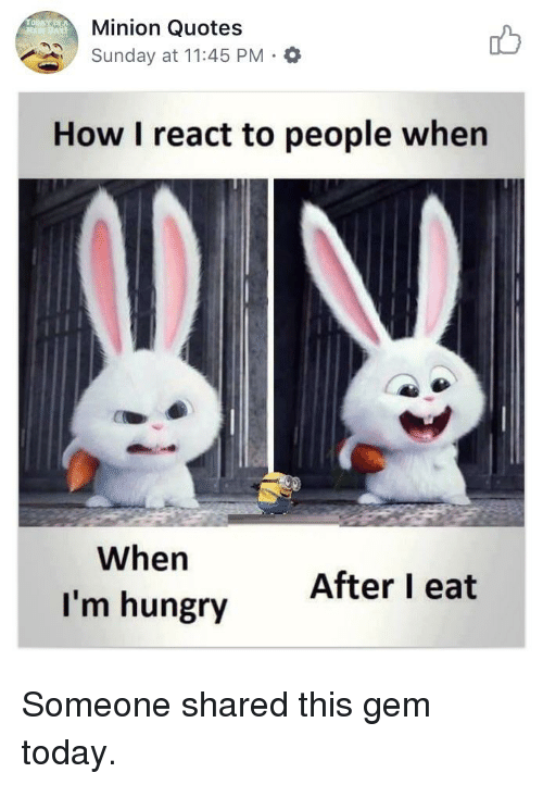 Minion Quotes Sunday at 1145 PM How I React to People When When I m     Hungry  Minion  and Quotes  Minion Quotes Sunday at 11 45 PM How