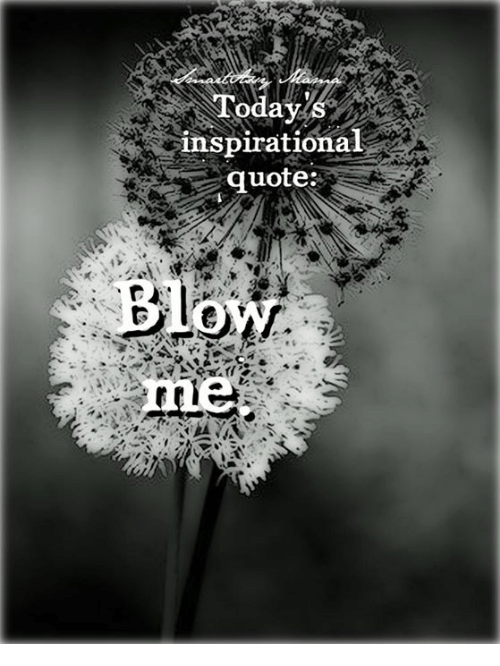 Today Inspirational Quote   Meme on me me Memes            and Inspiring Quotes  Today inspirational quote