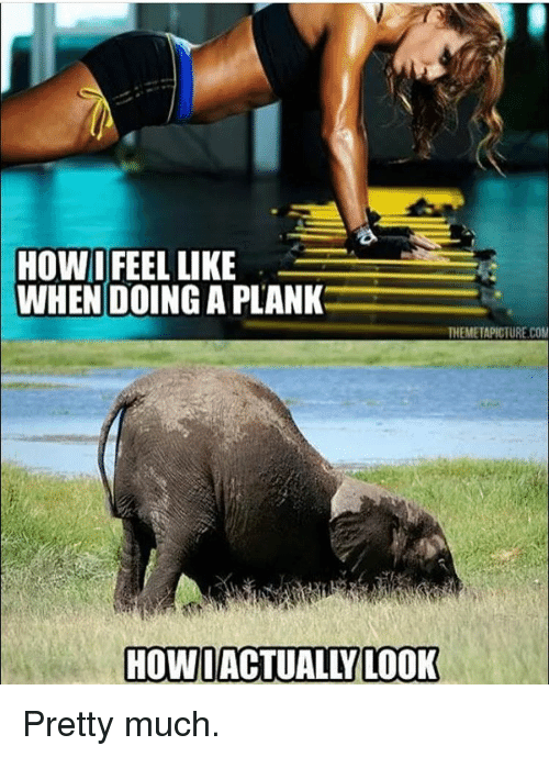 Planking Feel What You You Look How