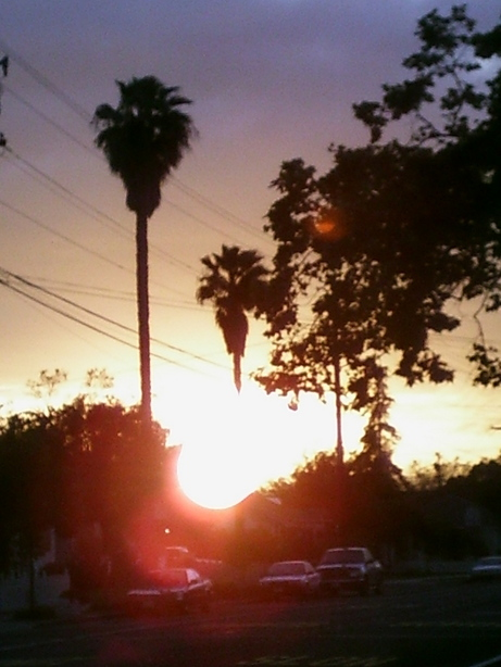 Livermore Ca Sunset On Maple Street Photo Picture