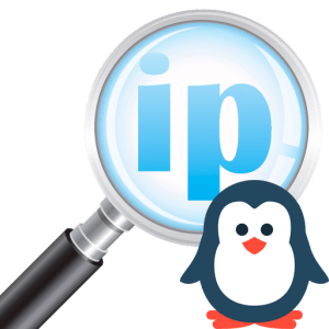 How to find out the IP address