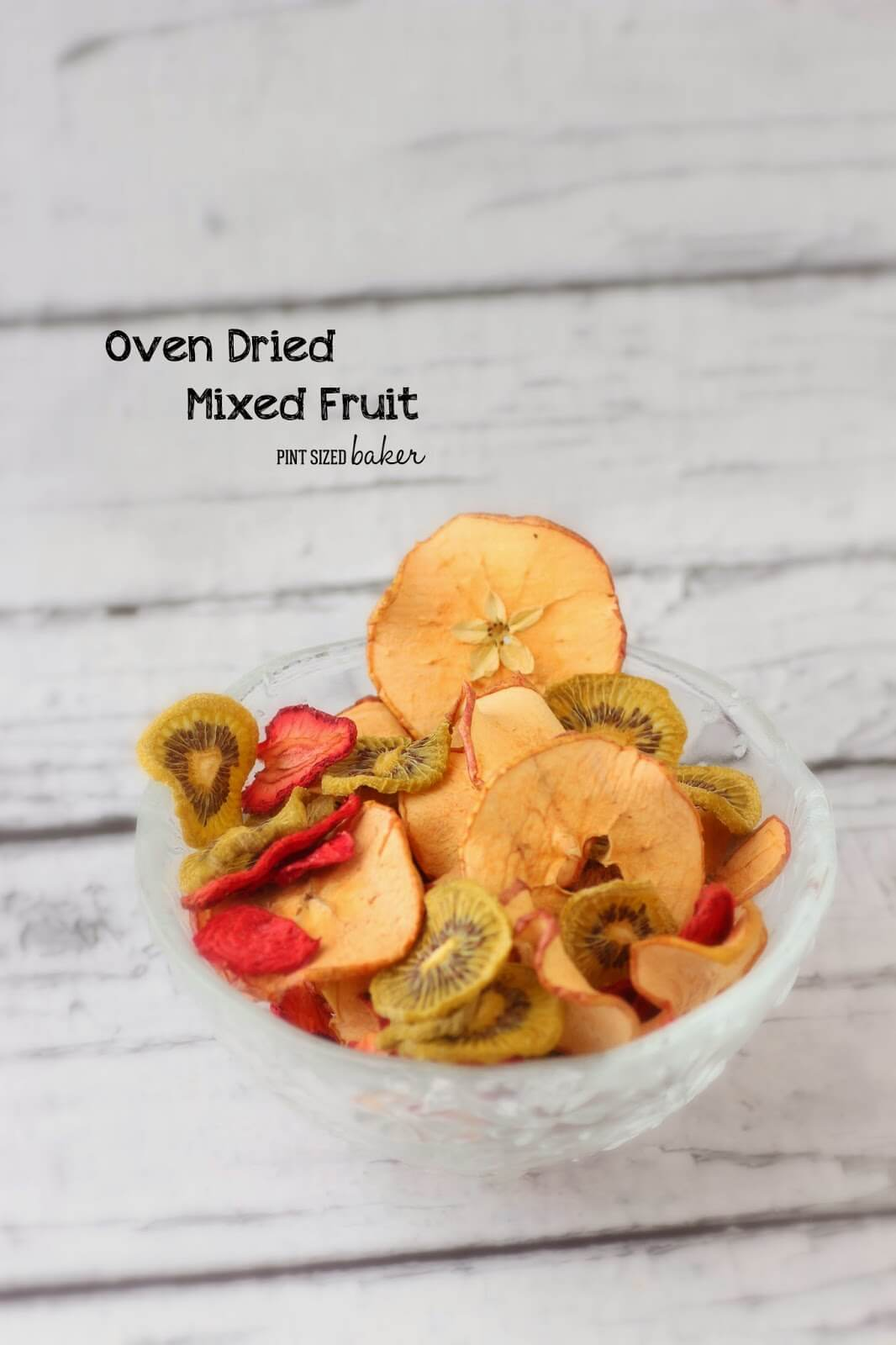 Oven Dried Mixed Fruit Pint Sized Baker