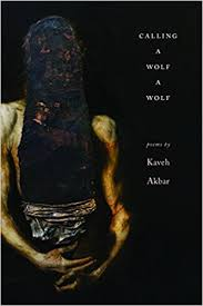 Poetry International Online     Poetry International is a world class     Working With Eggshells  A Review of Kaveh Akbar s Calling a Wolf a Wolf