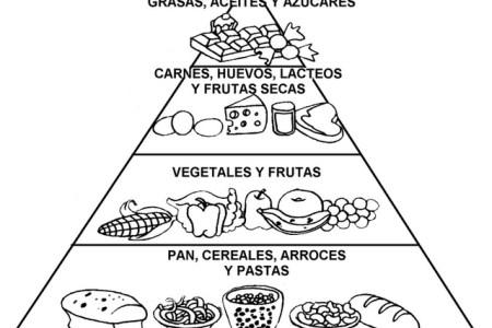Results for Piramide Alimenticia Para Niños Para Colorear