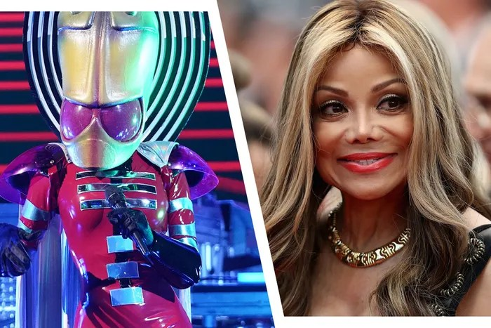 'The Masked Singer' Spoilers: Best Guesses for Celeb Cast