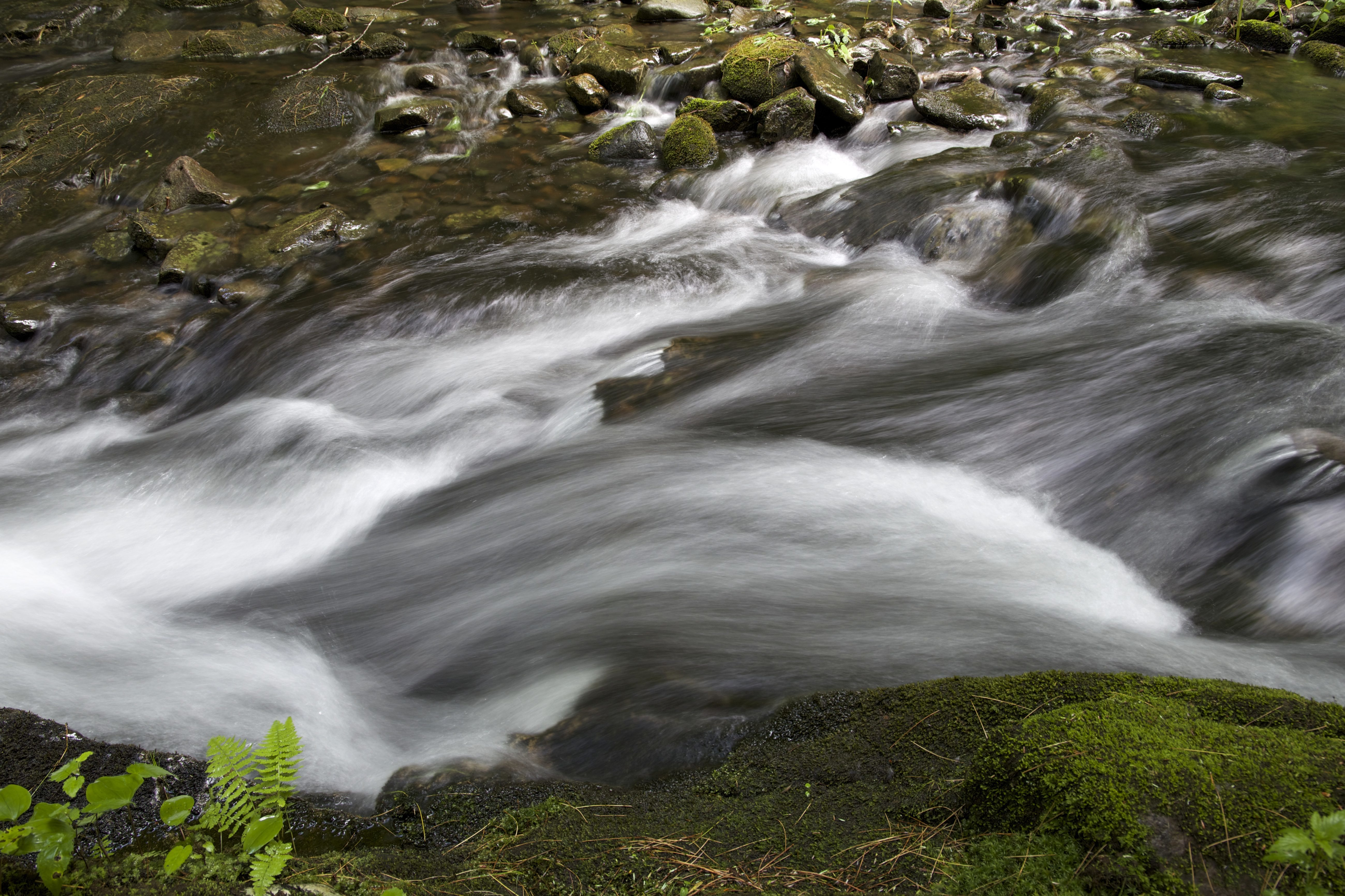 Free Picture Fast River Creek Water Nature Water Rocks