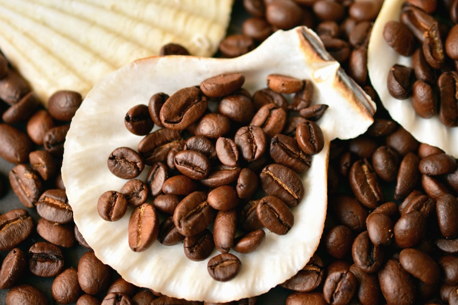 Free Picture Coffee Bean Drink Decoration Coffee Seed