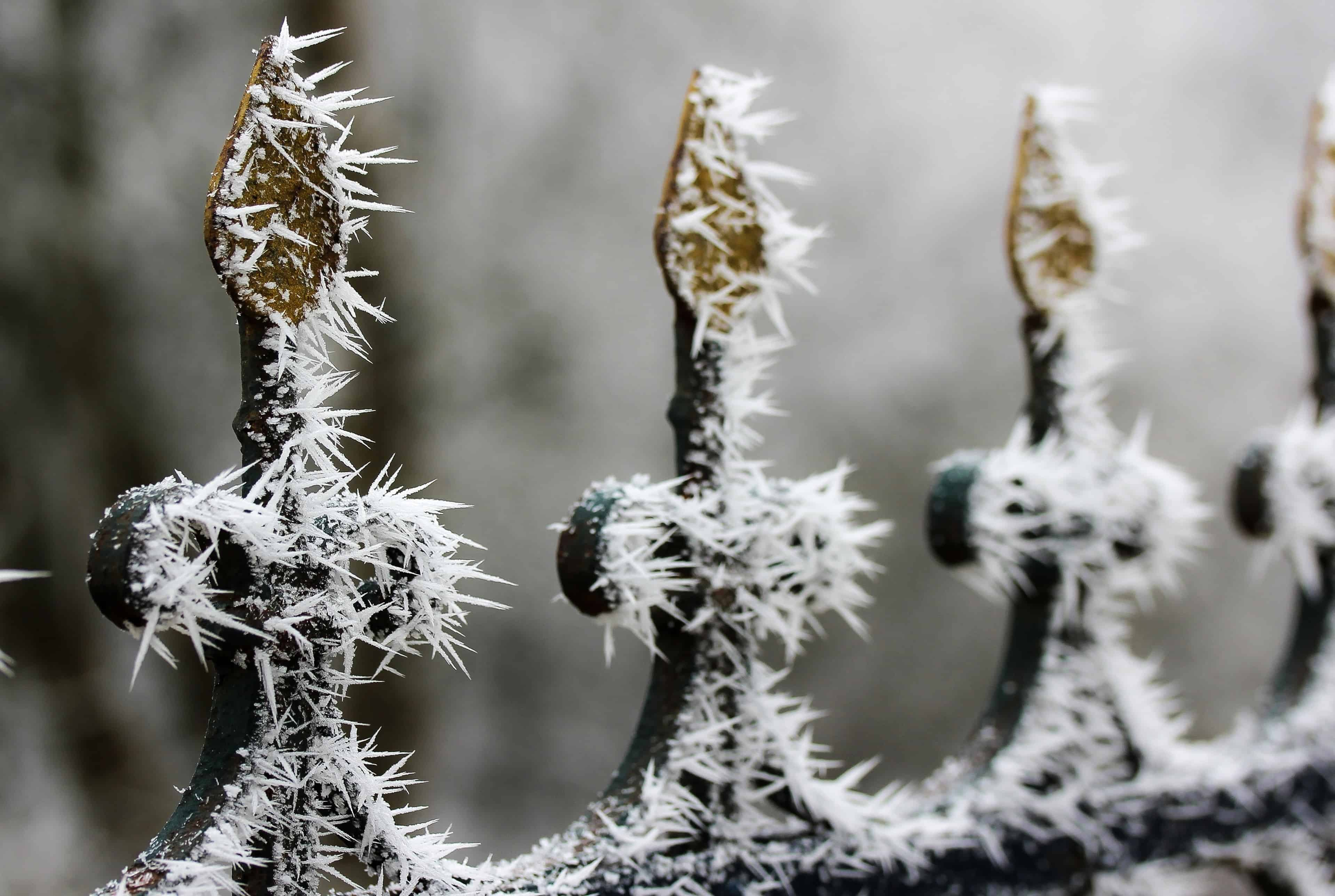Free Picture Fence Snowflake Iron Steel Metal Frost