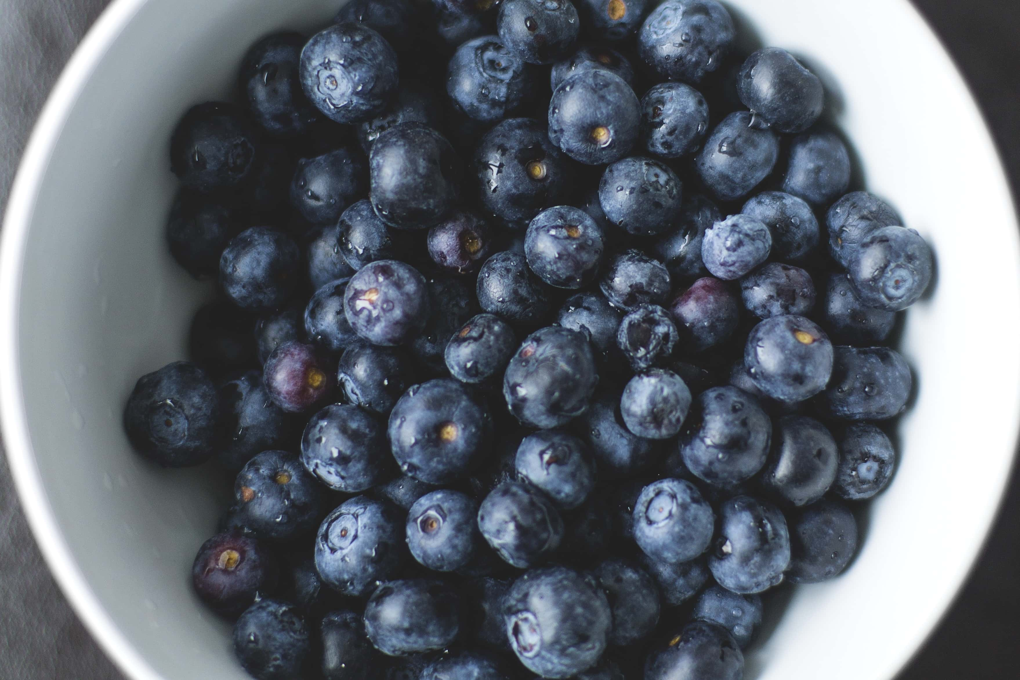 Free Picture Blackberry White Bowl Sweet Berry Food