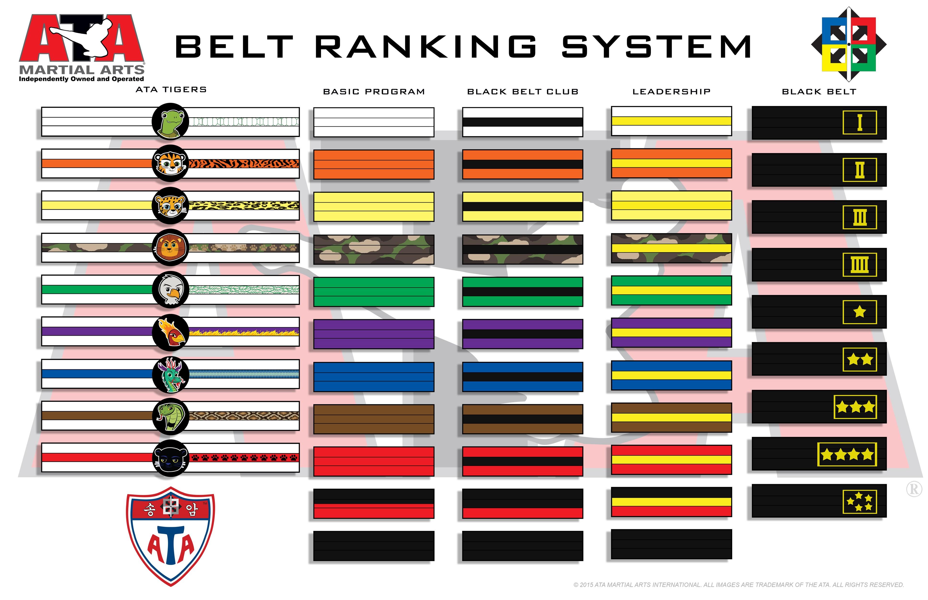 Kenpo Karate Belt Levels