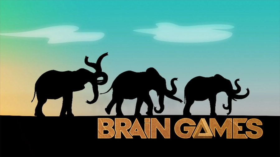 Brain Games Elephant Trunk Challenge   Ep  1