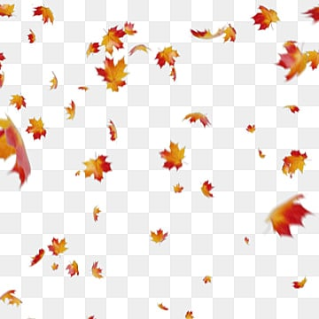 fall leaves png # 0