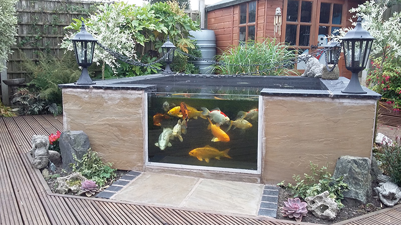 Above Ground Koi Pond Design Ideas