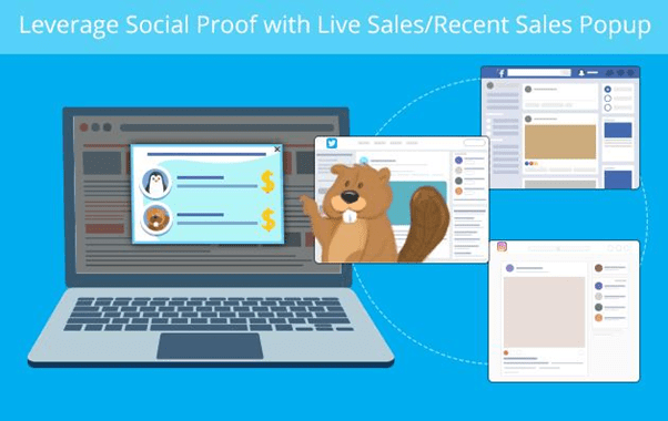 Make Use of Social Proof with Live Sales/Recent Sales Popup