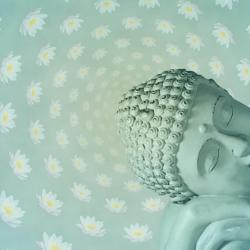 Buddhism Lotus Flower Wallpaper Gardening Flower And Vegetables