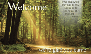 New Visitor Pew Cards Now Available The Presbyterian