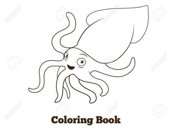 squid coloring pic # 37